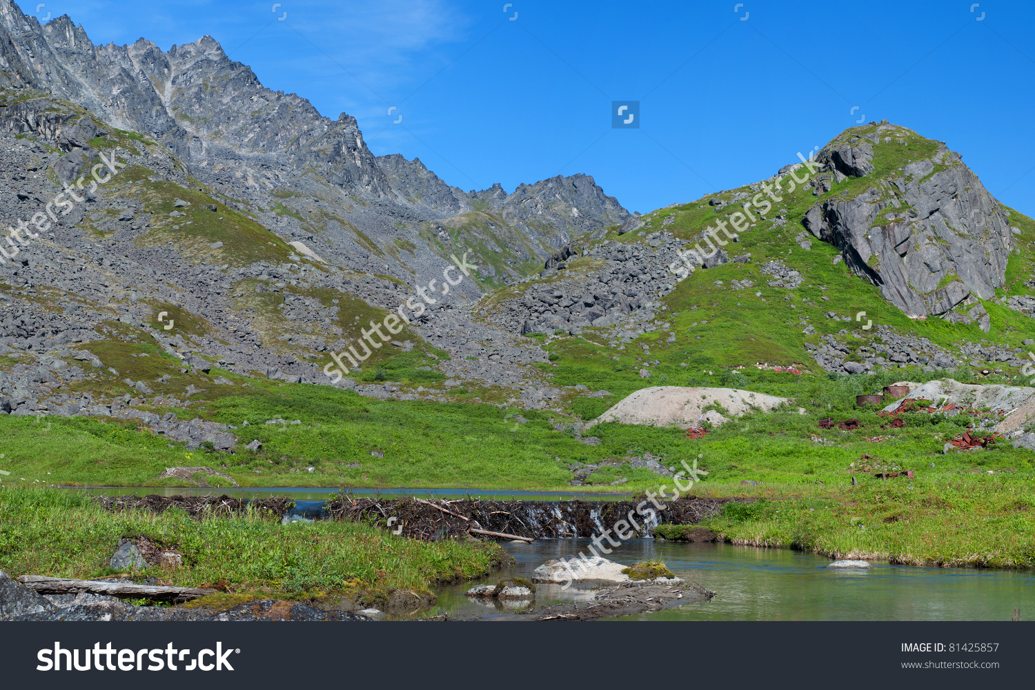 Beaver Dam In Archangel Valley In Hatcher Pass, Alaska Stock Photo.