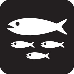 1000+ images about bait shop on Pinterest.