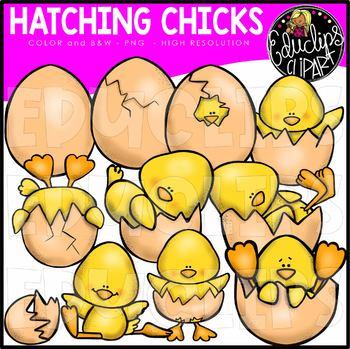 Hatching Chick Clip Art Bundle {Educlips Clipart}.