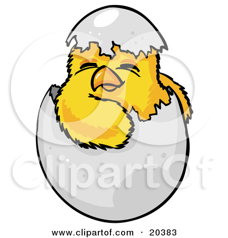 Clipart Illustration of a Cute Baby Yellow Chick Hatchling.