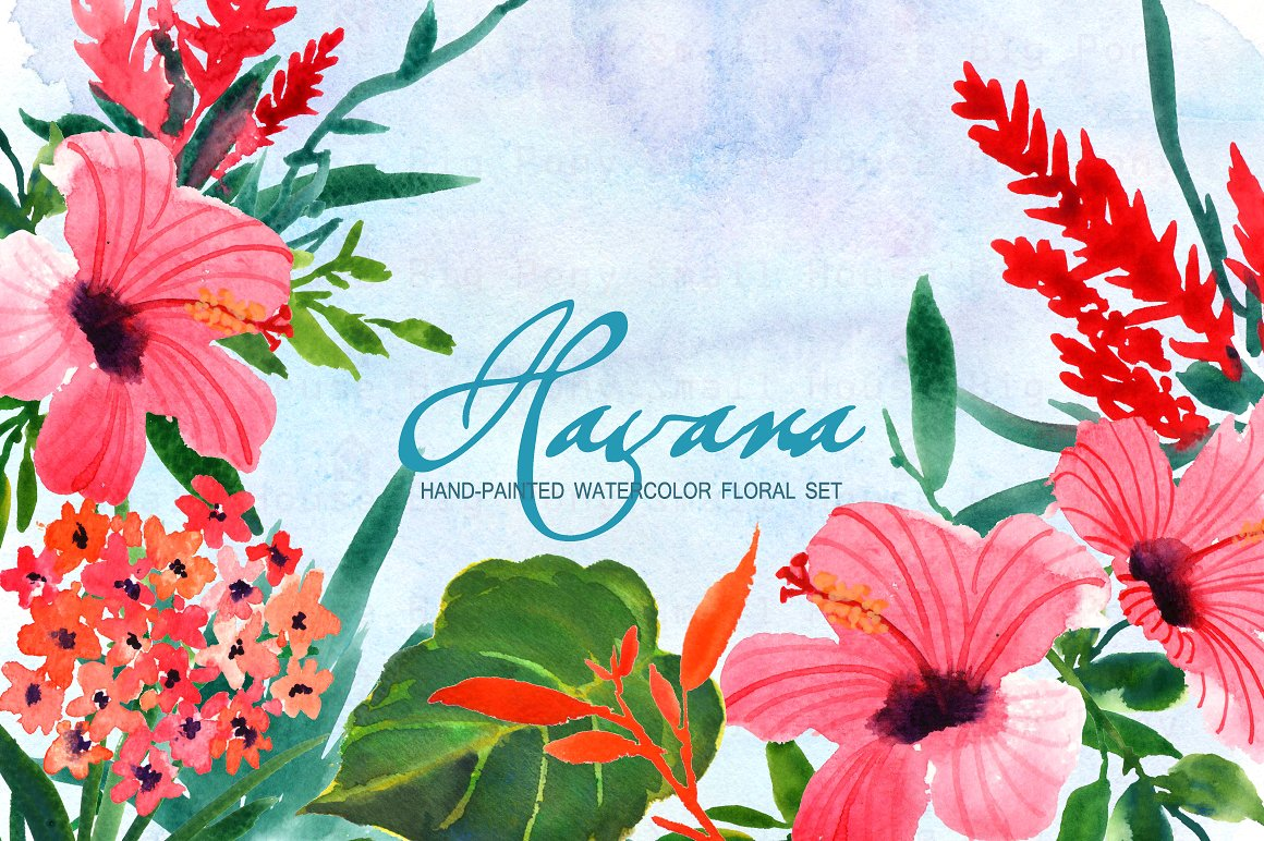 Hibiscus clipart Photos, Graphics, Fonts, Themes, Templates.