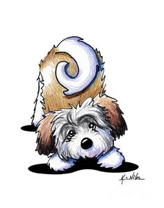 101 Best HAVANESE Clipart images in 2019.