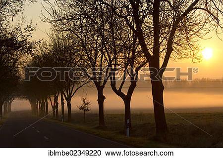 """Stock Photography of """"Sunrise over a misty landscape, K6305 county."""
