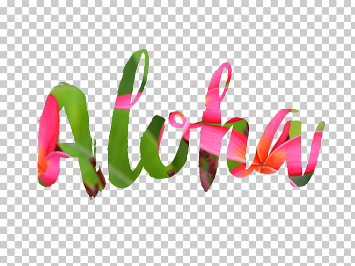 Hawaii Aloha Desktop , aloha, pink and green Aloha text.