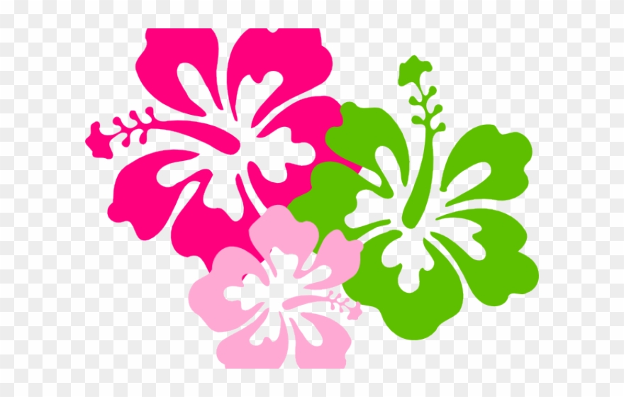Hibiscus Clipart Colorful.