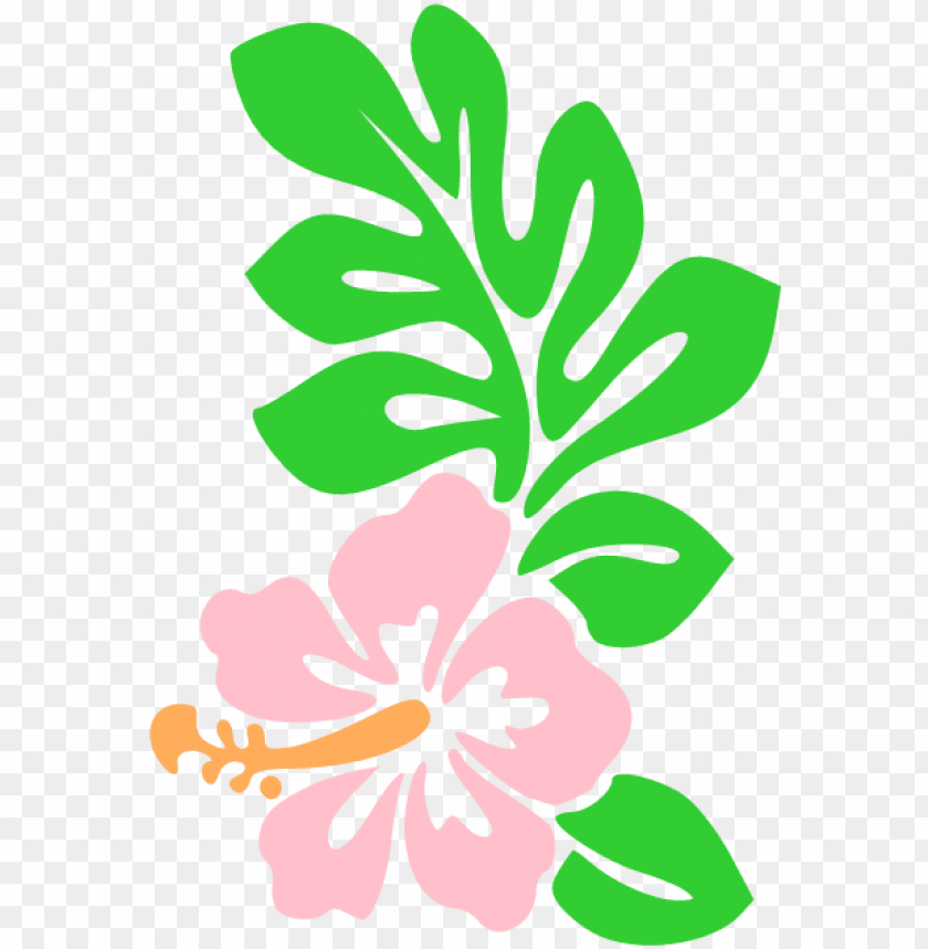 hawaii flower cartoon draw hawaiian flowers icon.