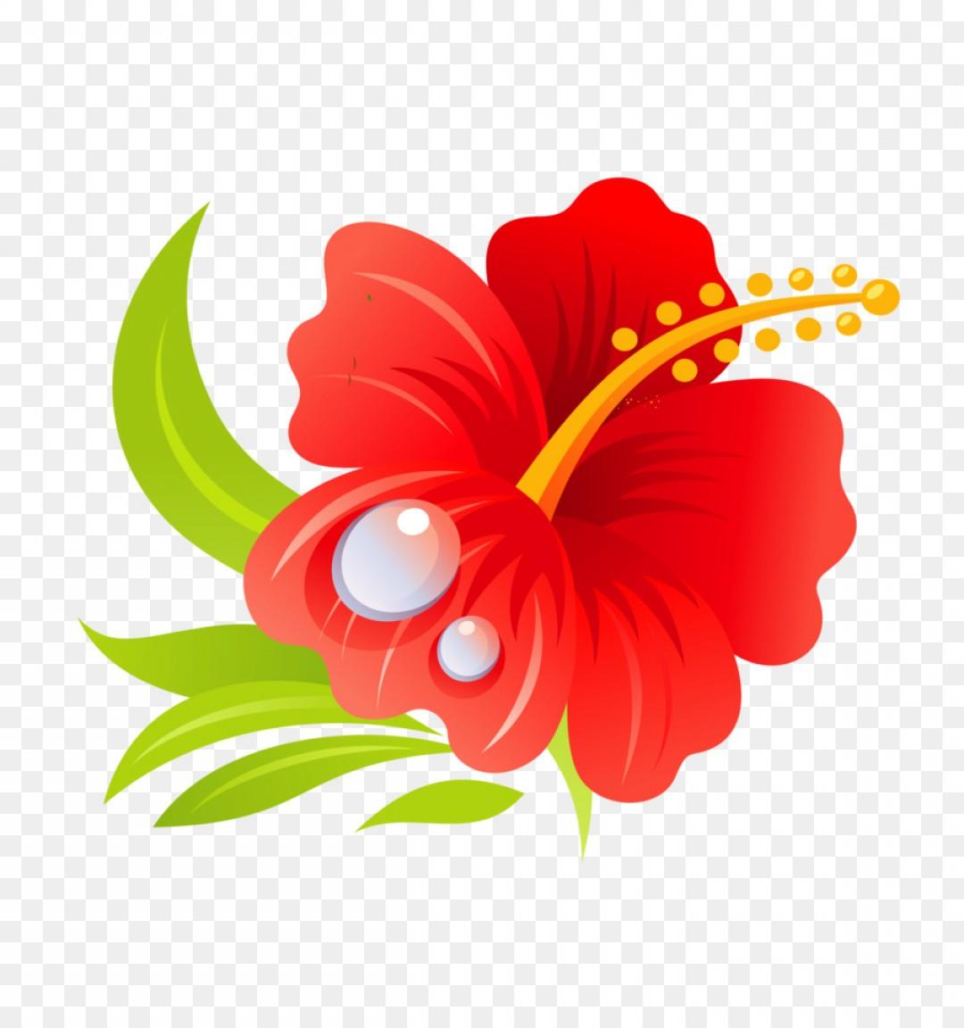 Png Hawaiian Hibiscus Hawaiian Hibiscus Drawing Clip A.