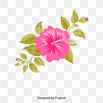 Hawaii Png, Vector, PSD, and Clipart With Transparent Background for.