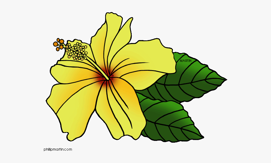 Yellow Flower Png Banner Hawaii.
