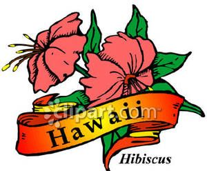 State Flower of Hawaii, the Hibiscus Royalty Free Clipart.