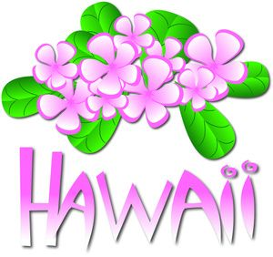 28 best images about hawaii on Pinterest.