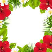 Hawaiian Clip Art Borders.