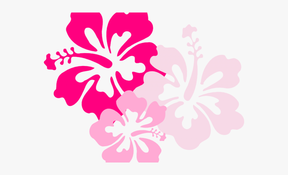 Pink Hawaiian Flower Clipart, Cliparts & Cartoons.