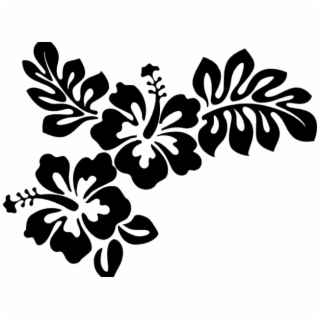 Hawaiian Flower Vector PNG Images.