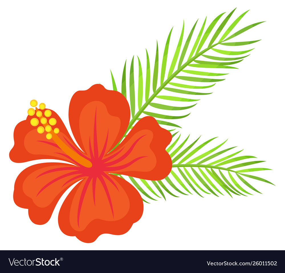 Floral decoration hawaiian flower with leaves.
