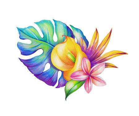 32,633 Hawaii Flower Stock Illustrations, Cliparts And Royalty Free.