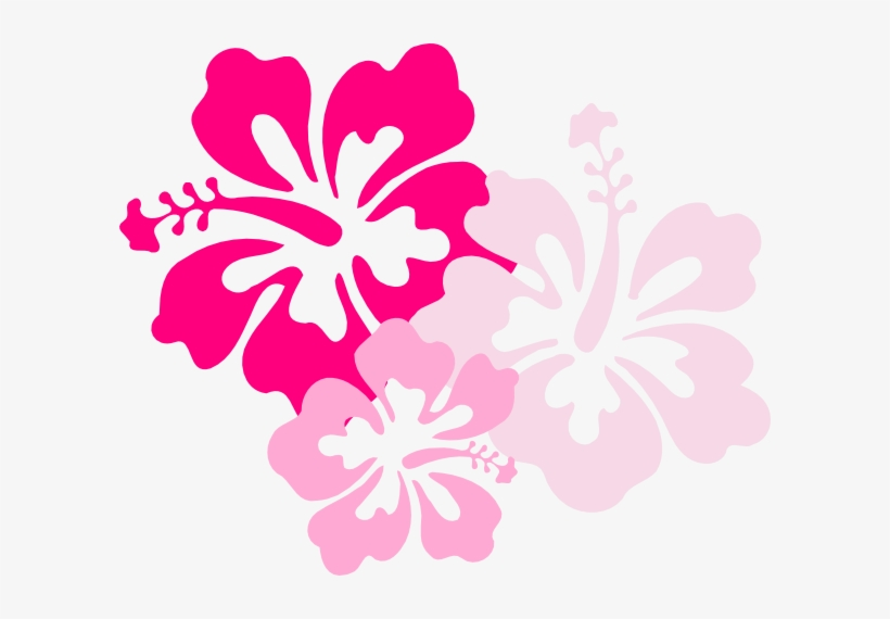 Hawaiian Flowers Clipart No Background.
