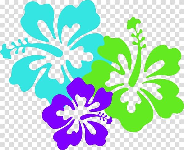 Hawaiian Maui Flower , Hibiscus Flower Template transparent.