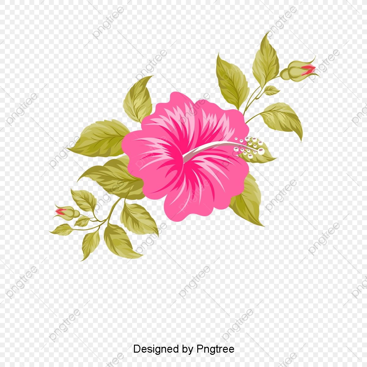 Hawaii Hand Painted Flowers, Hawaii, Tropic, Hand PNG and Vector.