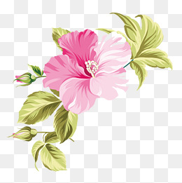 Hawaii Flower Png, Vectors, PSD, And Cli #114374.