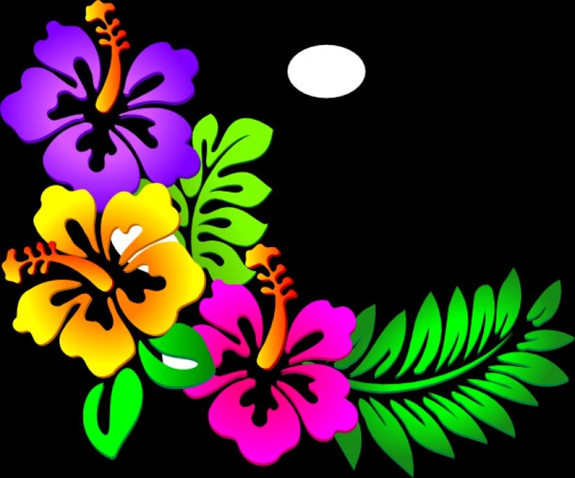 Hawaiian Graphics.