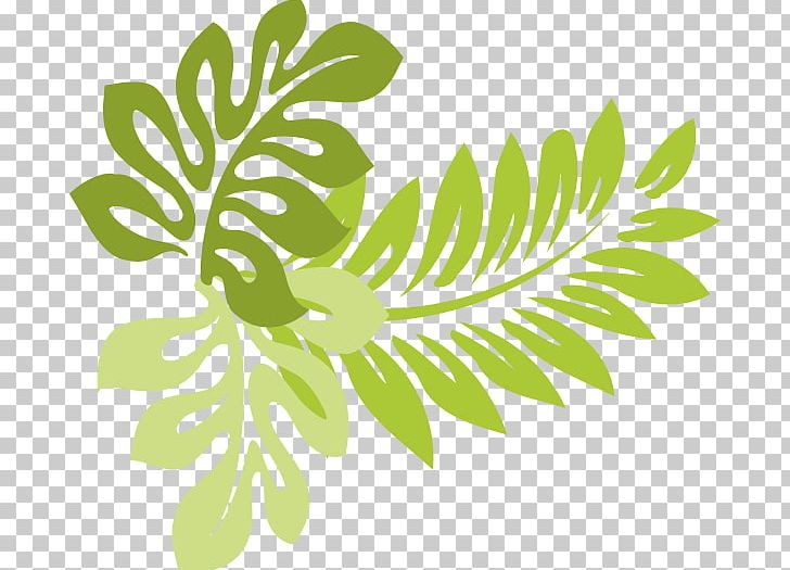 Hawaii Leaf PNG, Clipart, Black And White, Branch, Buckeye.