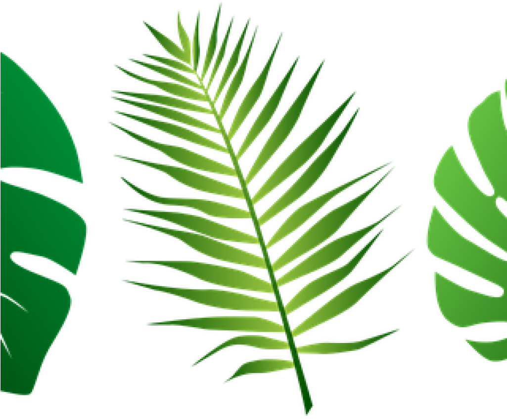 Jungle Leaves Clipart 19 Jungle Leaf Svg Black And.
