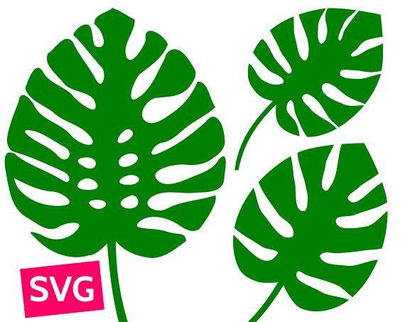 3 fichiers SVG de feuille de Monstera pour Cricut, SVG.