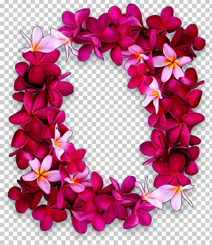 Maui Lei Day Hawaiian Puka Shell PNG, Clipart, Floral Design, Flower.