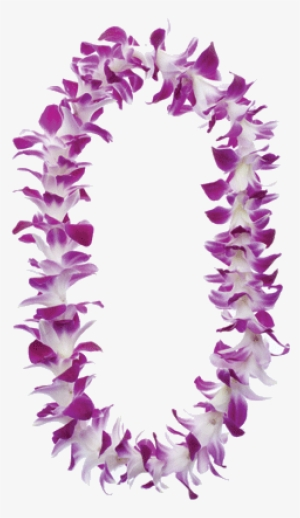 Hawaiian Lei PNG & Download Transparent Hawaiian Lei PNG Images for.
