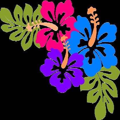 hawaiian.