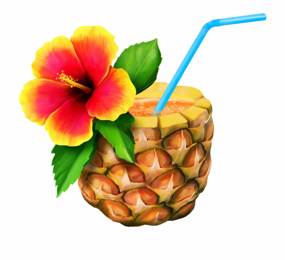 El Png Pinterest Hawaiian Moana And Ⓒ.