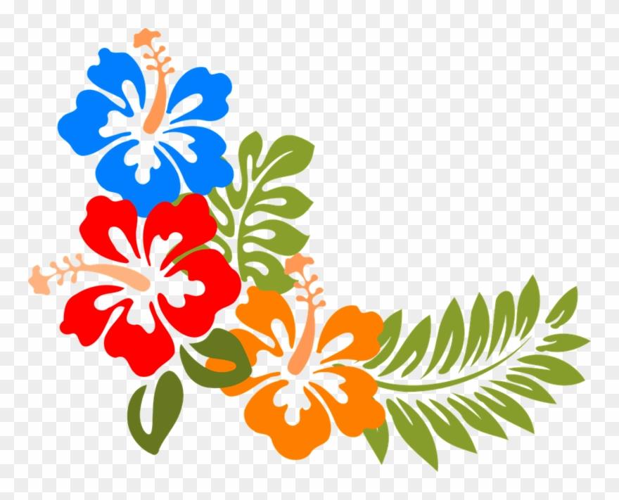 Hibiskus Hawaii Blumen Tropis.