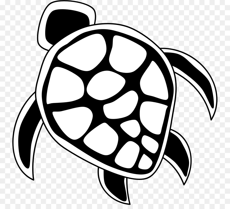 Sea Turtle Background png download.