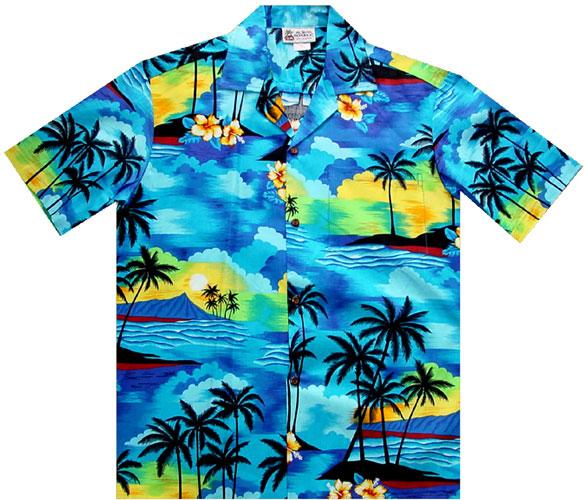 Free Hawaiian Shirts Cliparts, Download Free Clip Art, Free Clip Art.
