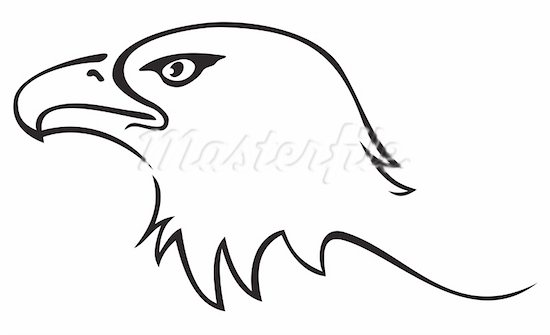 Hawk Clipart Black And White.