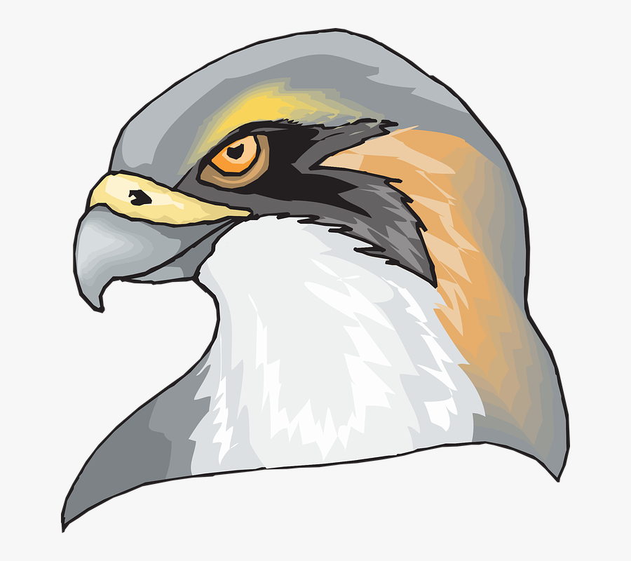 Hawk Head Png , Free Transparent Clipart.