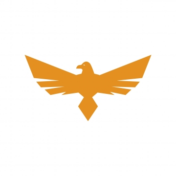 Hawk Png, Vector, PSD, and Clipart With Transparent Background for.