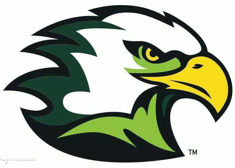 green hawk mascot logo.