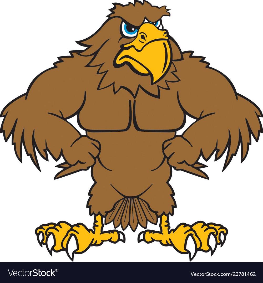 Hawk logo mascot.
