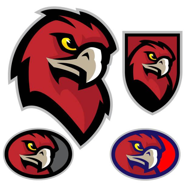 Best Hawk Mascot Illustrations, Royalty.