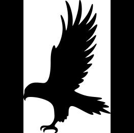 Hawk Silhouette.