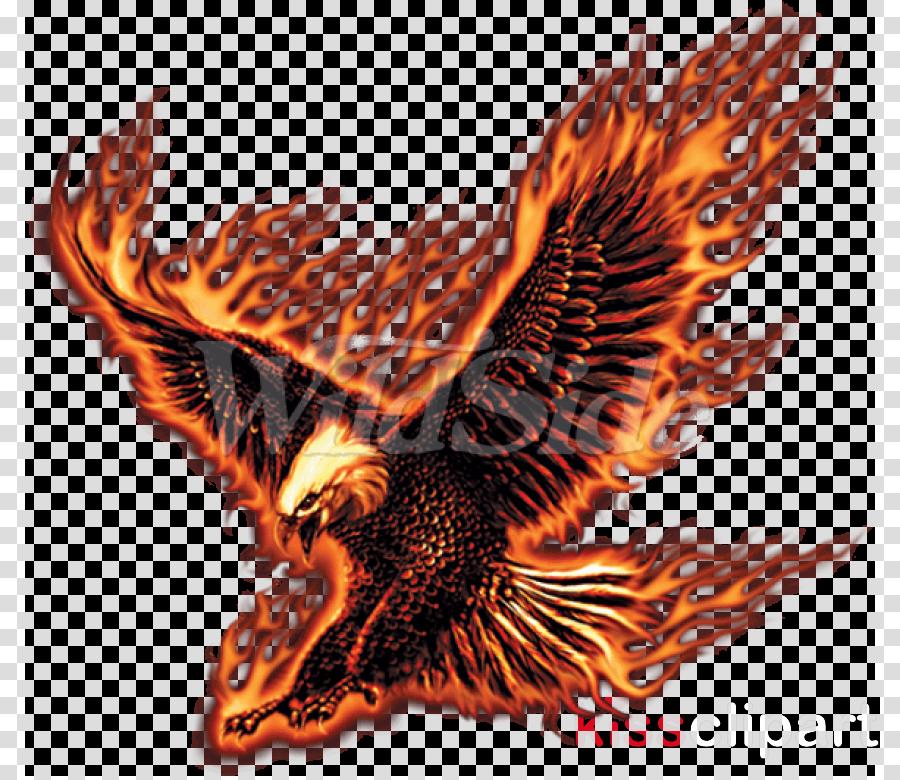 golden eagle eagle bird of prey hawk wing clipart.