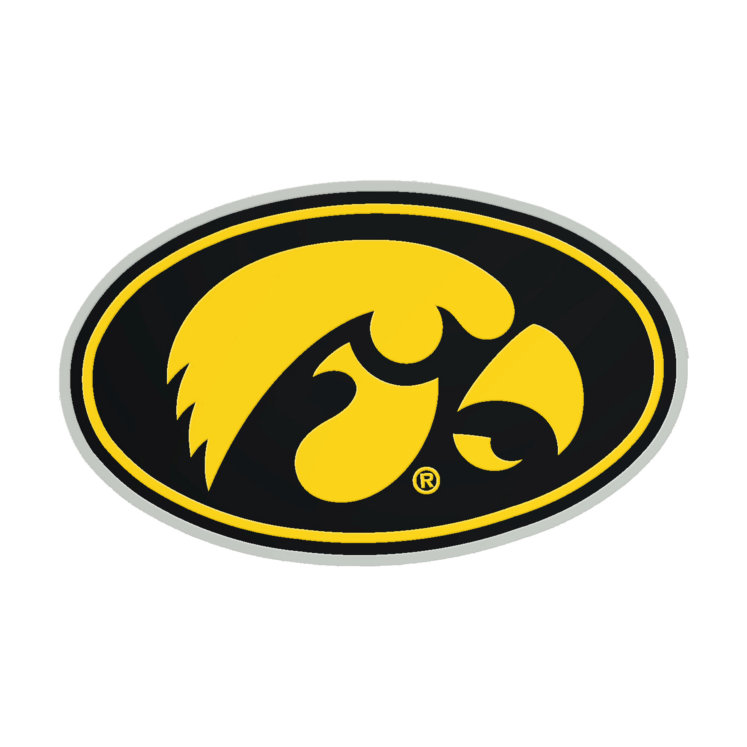 Wincraft Iowa Hawkeyes Logo Acrylic Metallic Auto Emblem by Wincraft at  Fleet Farm.