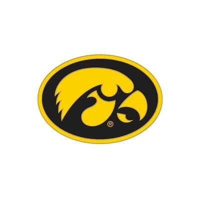 IOWA HAWKEYES LOGO LAPEL COLLECTOR PIN NEW.