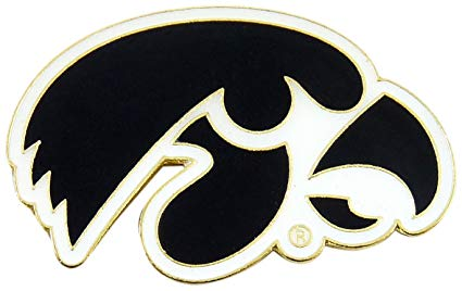 Buy NCAA Iowa Hawkeyes Logo Pin Online at Low Prices in.
