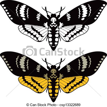 Vector of Death's head hawk moth, vector illustration csp13322689.