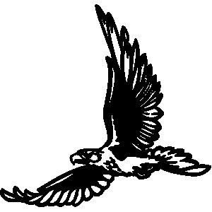 Hawk clip art free 3.