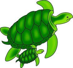 Hawksbill turtle clipart.