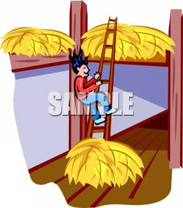A_boy_climbing_a_ladder_in_a_barn_to_jump_down_into_a_hay_pile_110727.